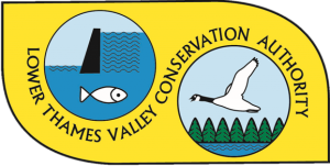 lower-thames-valley-conservation1